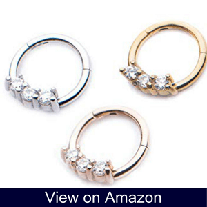 Stainless Steel Hinged Segment Ring with Prong Set